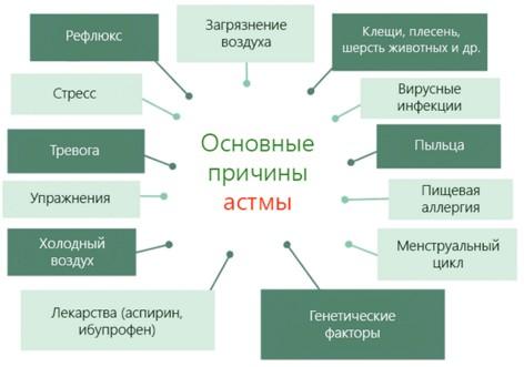 Основные факторы